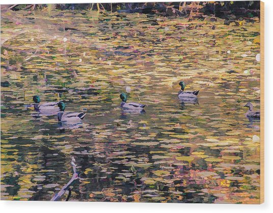 Mallards On Autumn Pond Wood Print