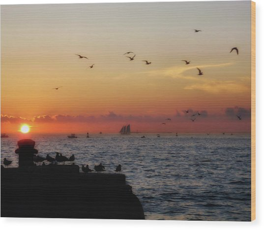 Mallory Square Sunset Wood Print by JAMART Photography