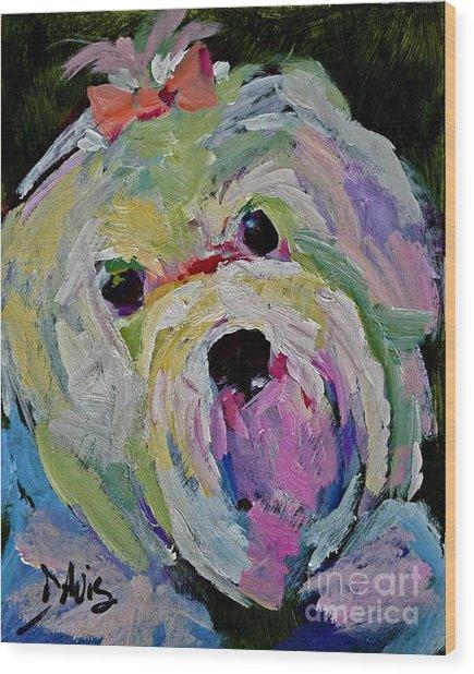 Maltese Dog I Wood Print by Xx X