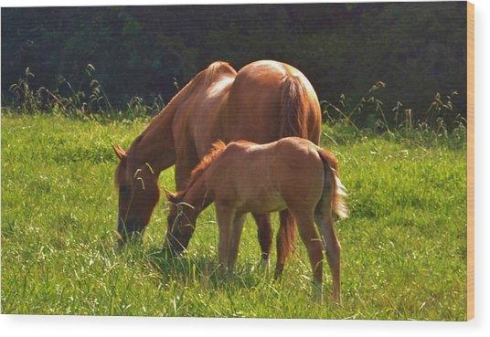 Mama And Baby Wood Print
