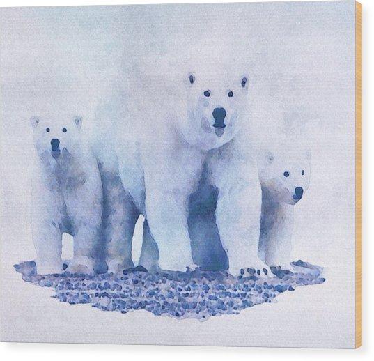 Mamma Bear  Wood Print