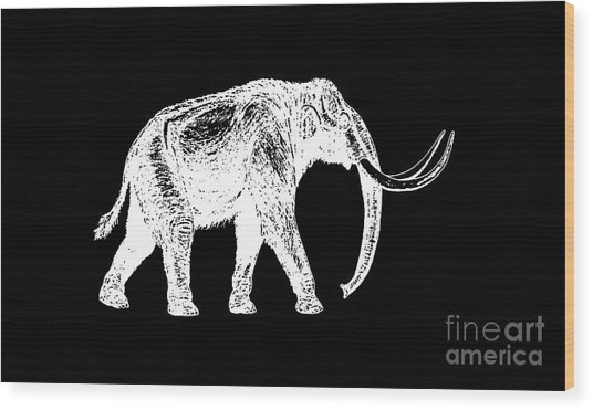 Mammoth White Ink Tee Wood Print