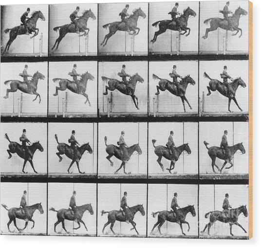 Man And Horse Jumping Wood Print