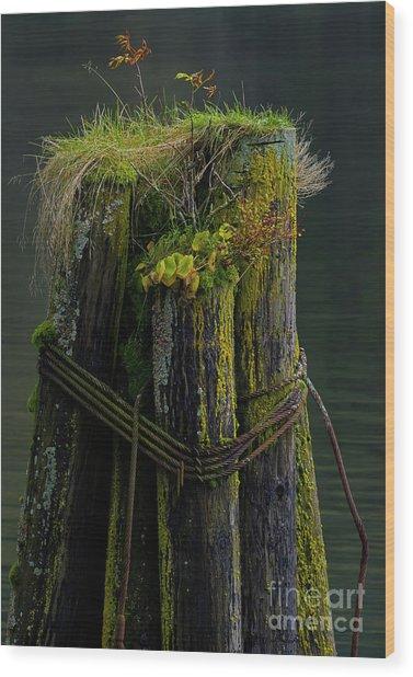 Man Made Island-signed-#2127 Wood Print