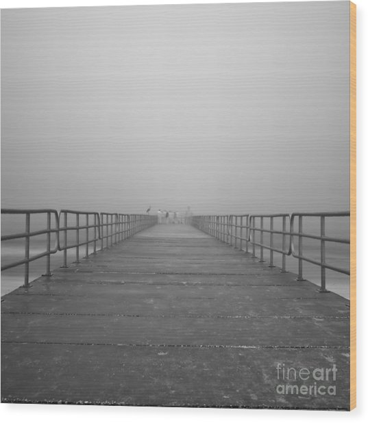 Manatee Beach Pier In Fog Infrared 39 Wood Print by Rolf Bertram