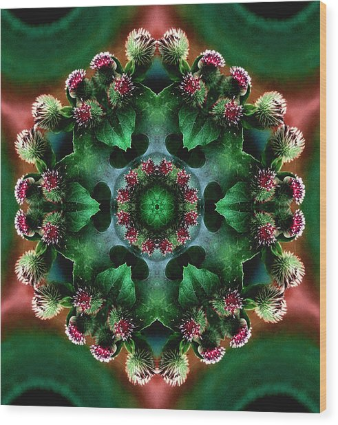 Mandala Bull Thistle Wood Print