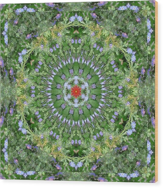 Mandala July 16 Wood Print by Allen Rybo
