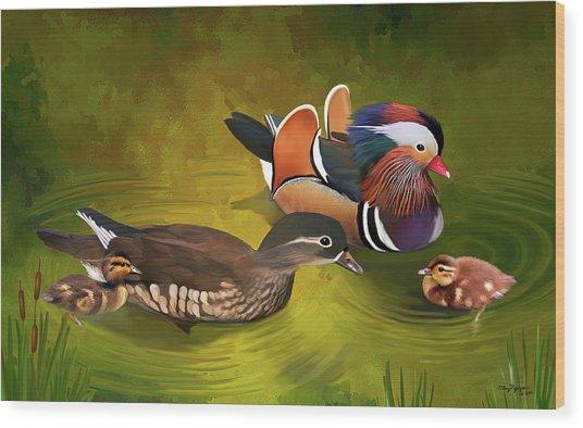 Mandarin Duck Family Wood Print