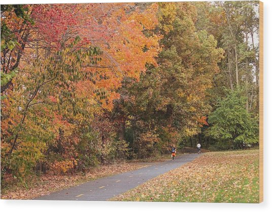 Manhan Rail Trail Fall Colors Wood Print