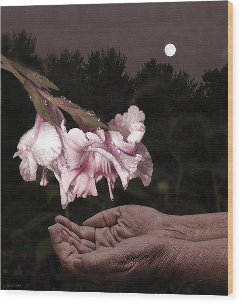 Manna Wood Print