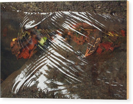 Manoa's Fallen Wood Print