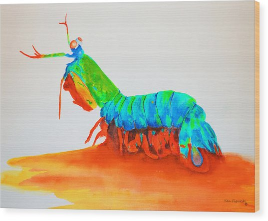 Mantis Shrimp Wood Print