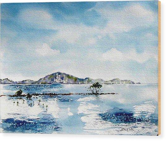 Manuel Reef Wood Print