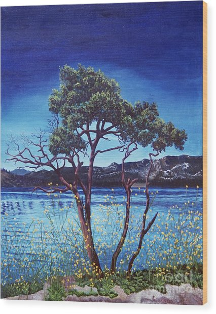 Manzanita At Lake Hemet Wood Print