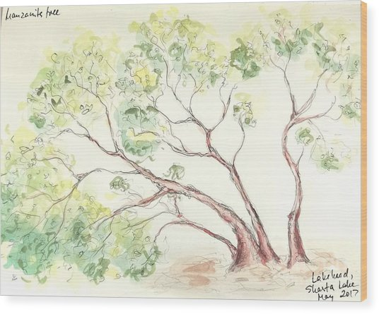 Manzanita Tree Wood Print