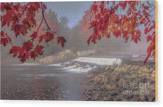 Maple Leaf Frame Ws Wood Print