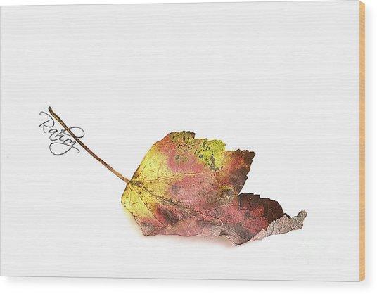 Maple Leaf Wood Print by Rahat Iram