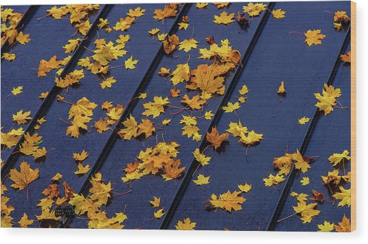 Maple Leaves On A Metal Roof Wood Print