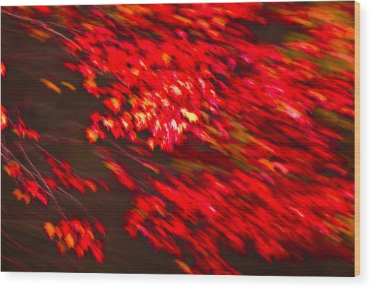 Maple Red Abstract Wood Print