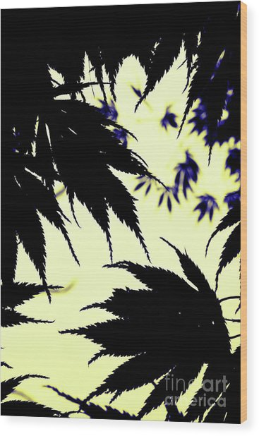 Maple Silhouette Wood Print