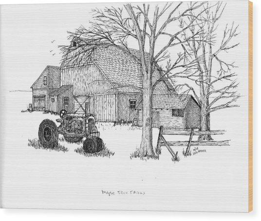 Maple Tree Farm Wood Print by Jack G  Brauer