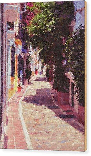 Marbella, Andalusia - 04 Wood Print by Andrea Mazzocchetti