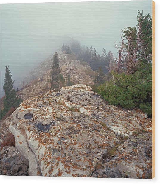 Marble View Fog-sq Wood Print