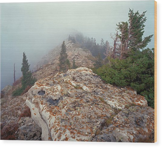 Marble View Fog Wood Print