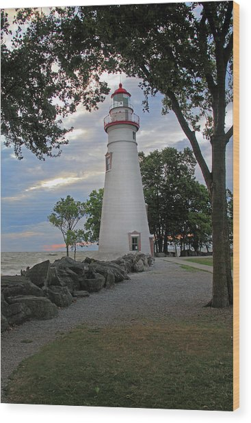 Wood Print featuring the photograph Marblehead Ohio by Angela Murdock