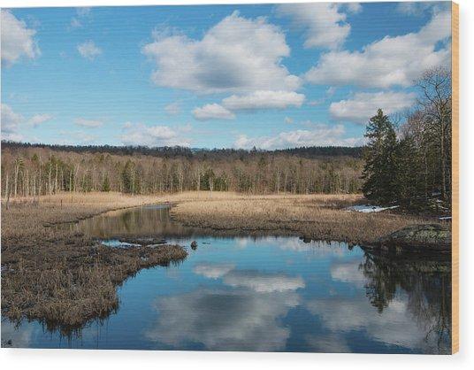 March Afternoon At Black Creek Wood Print