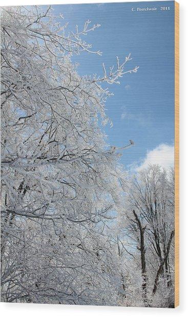 March Winters  Wood Print by Carolyn Postelwait