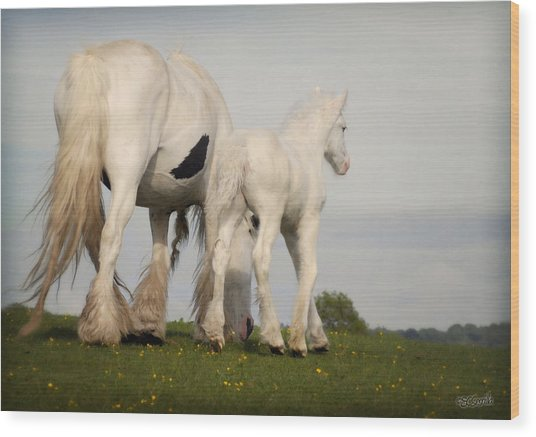 Mare And Foal Wood Print by Elizabeth Sescilla