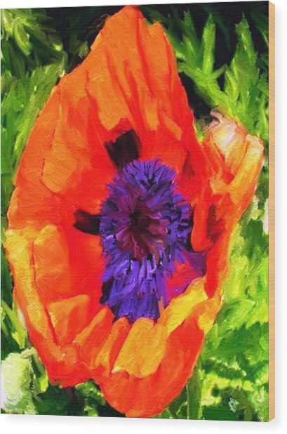 Margo's Poppy Wood Print