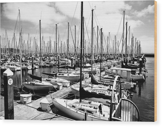 Marina In Black And White Wood Print by Sean Gillespie