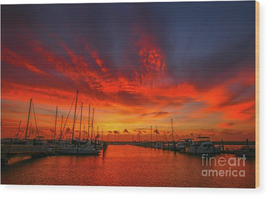 Marina Sunrise - Ft. Pierce Wood Print