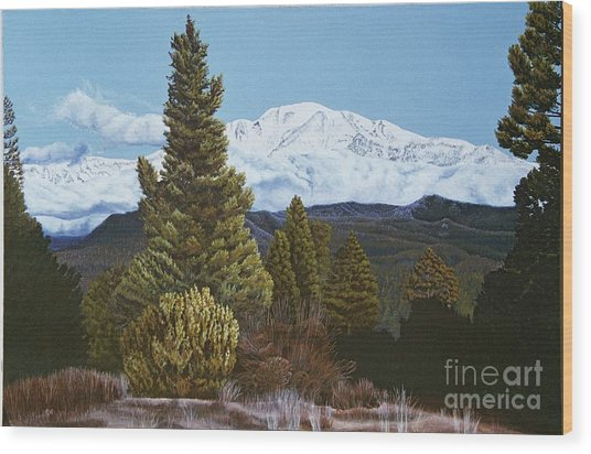 Marion Mountain In Winter Wood Print