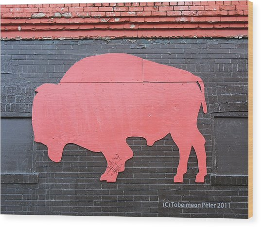 Maris' Bison Wood Print