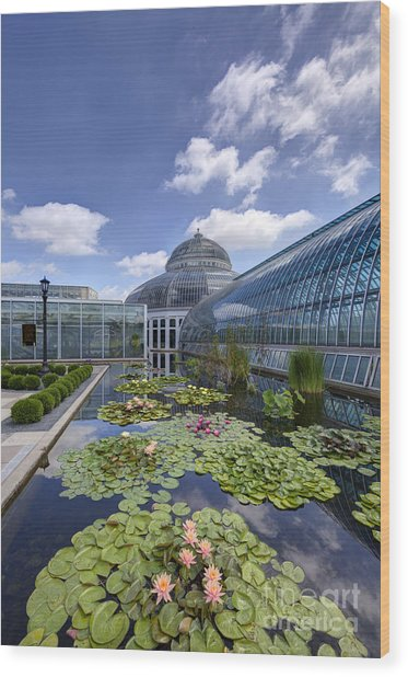 Marjorie Mcneely Conservatory At Como Park And Zoo Wood Print