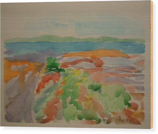Marlboro Beach Wood Print by Francine Frank