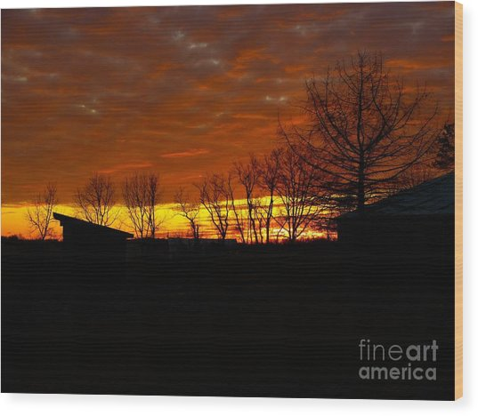 Wood Print featuring the photograph Marmalade Sky by Donald C Morgan