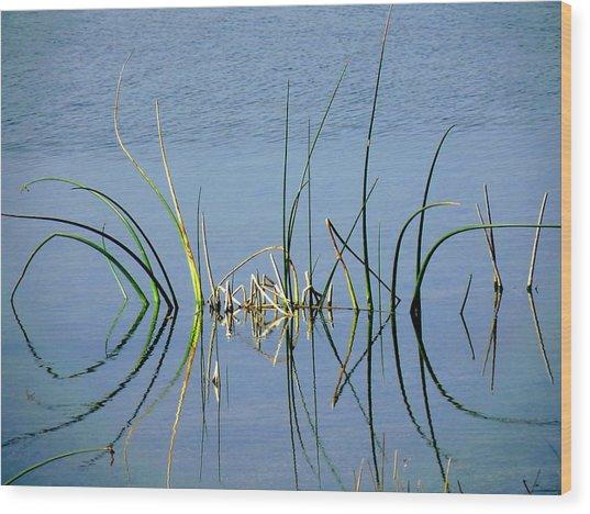 Marsh Design Wood Print by Rosalie Scanlon