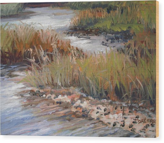 Marsh Reflections Wood Print by Marilyn Masters