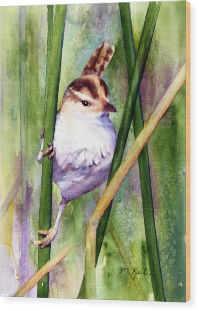 Silver Creek Marsh Wren Wood Print