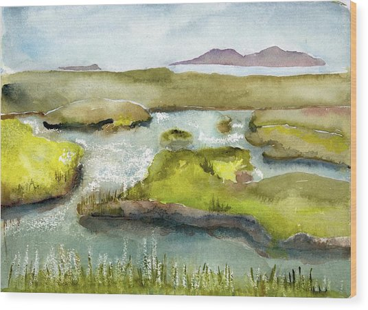 Marshes With Grash Wood Print