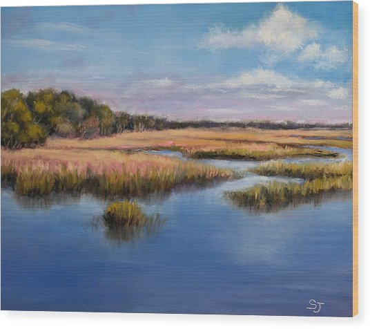 Marshland In Florida Wood Print