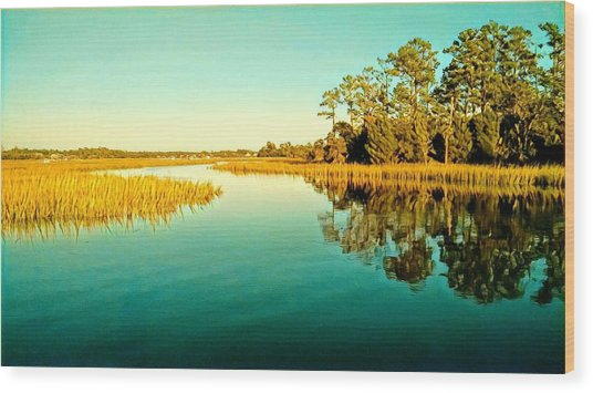 Marvelous Marsh Wood Print