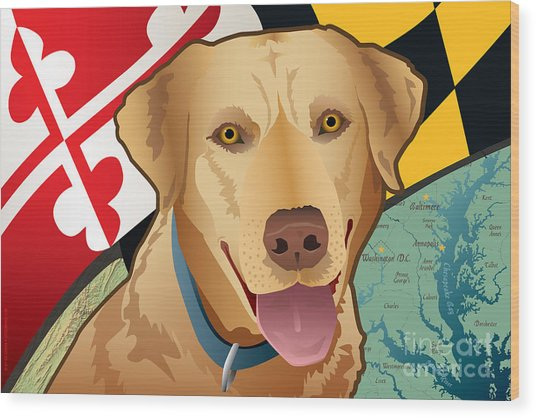 Maryland Yellow Lab Wood Print