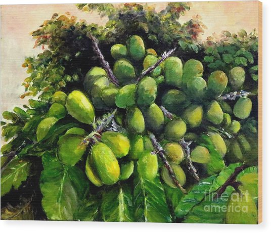 Matoa Fruit Wood Print