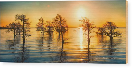 Mattamuskeet Sunrise 9103 Wood Print