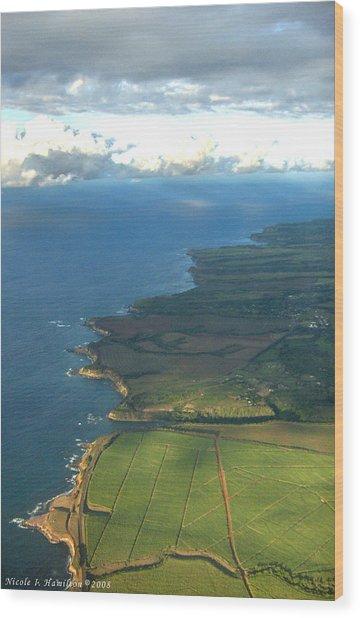 Maui Coastline Wood Print by Nicole I Hamilton